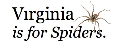 Virginia Is For Spiders!